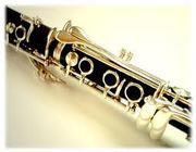 Clarinet and Saxophone Private Music Lessons