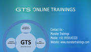 SAP GTS Training in Online